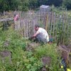 Farsophone Allotment